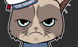 "Our new ""Stay Grumpy"" t-shirt: CLICK HERE TO BUY THE SHIRT"